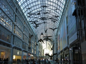 Canada Geese at Eaton Centre
